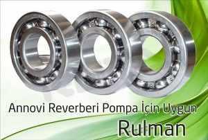 ar pompa rulman 1 300x202 - Annovi Reverberi AR Pompa - Rulman