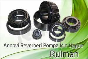ar pompa rulman 2 300x202 - Annovi Reverberi AR Pompa - Rulman