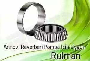 ar pompa rulman 300x202 - Annovi Reverberi AR Pompa - Rulman