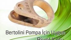 Bertolini Pump Connecting Rod