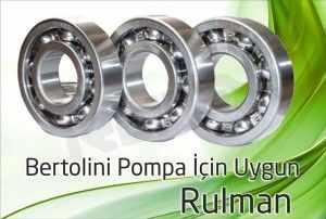 bertolini pompa rulman 2 300x202 - Bertolini Pompa - Rulman