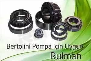 bertolini pompa rulman 3 300x202 - Bertolini Pompa - Rulman