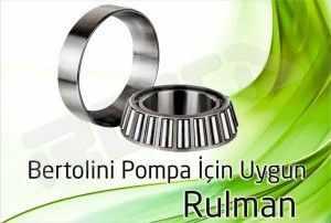 bertolini pompa rulman 300x202 - Bertolini Pompa - Rulman