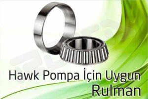 hawk pompa rulman 1 300x202 - Hawk Pompa - Rulman