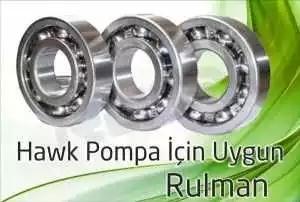 hawk pompa rulman 3 300x202 - Hawk Pompa - Rulman