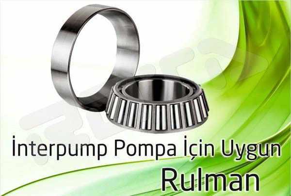 interpump pompa rulman 1