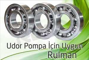 udor pompa rulman 2 300x202 - Udor Pompa - Rulman