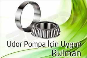 udor pompa rulman 300x202 - Udor Pompa - Rulman