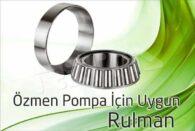 Özmen Pompa – Rulman