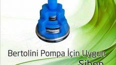 Bertolini Pump Valve