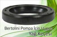 Bertolini Pompa – Yağ Keçesi