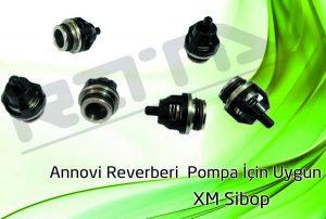 ar xm pompa 300x202 - Annovi Reverberi AR XM Pompa - Sibop